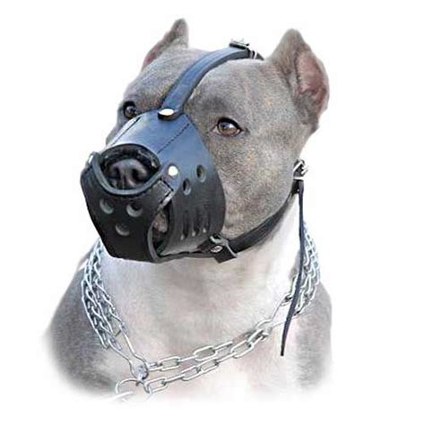 muzzle for pitbull adjustable leather muzzle with superior air circulation