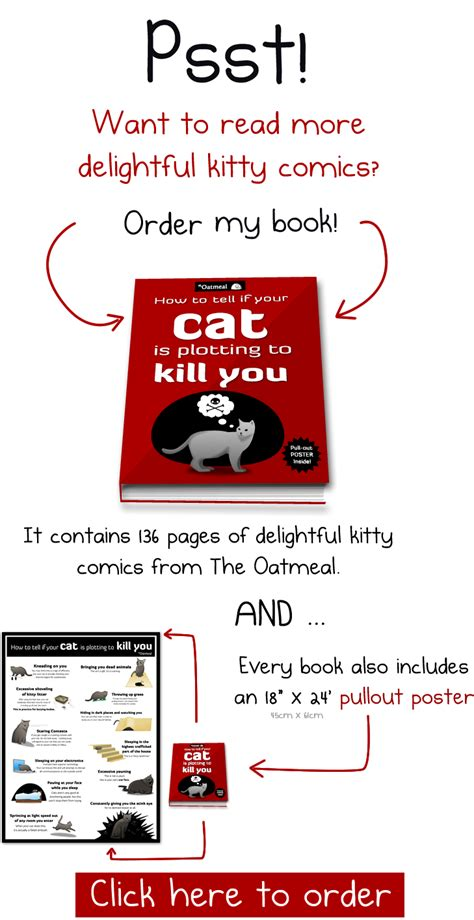 how to tell if your is in how to tell if your cat is plotting to kill you the oatmeal