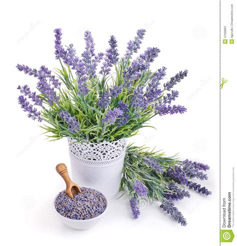 vasi di lavanda vaso di lavanda e della ciotola con i fiori secchi