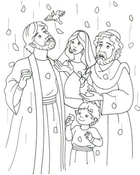 moses quail coloring page manna bread and quail from heaven bible ot moses