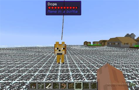 Meme Mod Minecraft - meme in a bottle â ð ð ð ð ð ñ minecraft 1 12 2 1 11 2 1 10 2