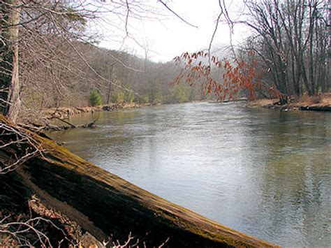 pa fish and boat commission wild trout streams trout anglers find it all in state s parks forestlands