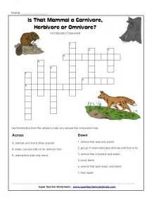 4th carnivores herbivores omnivores