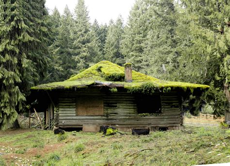 Mountain Cabin by Mountain Cabin Once A Family Getaway This Mossy Roofed