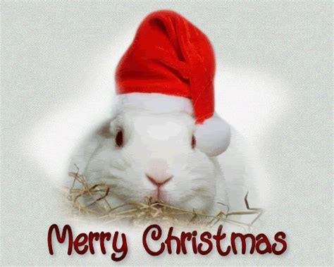 gifs animados de bonitas  traviesas mascotas navidenas
