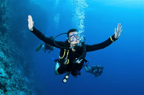 le dive scuba hand signal mantaray jpg just gotta dive jgd