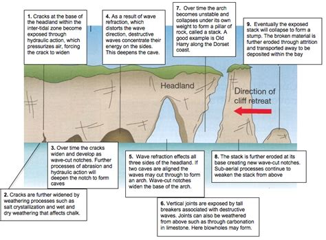 caves arches stacks and stumps diagram coasts of erosion and coast of deposition the