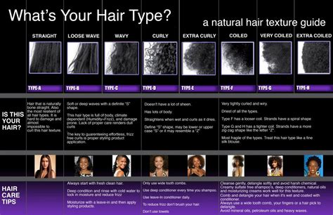 American Hair Types by American Hair Type Chart