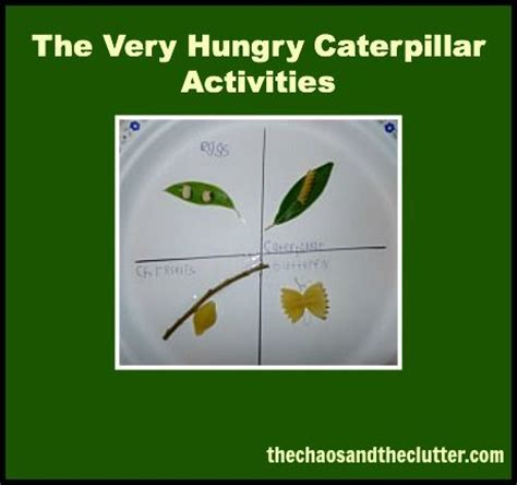 libro the very hungry caterpillar la 17 best images about clase libro la oruga muy hambrienta on coloring pages