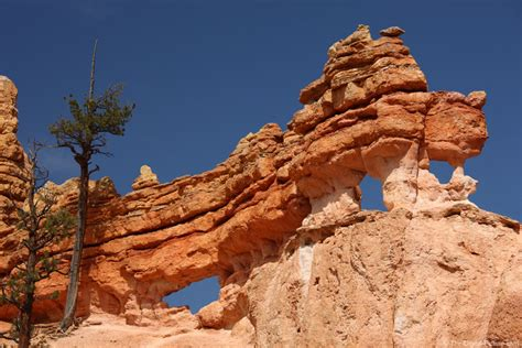 dragon  rocks  bryce canyon national park
