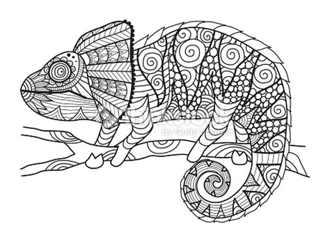 hand drawn chameleon vector art thinkstock