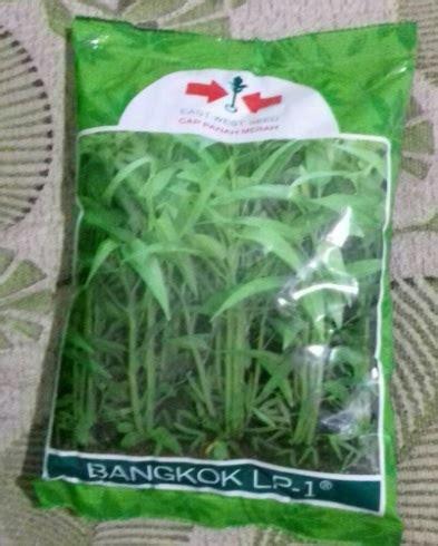 Benih Bayam Panah Merah benih kangkung bangkok 1 kg panah merah bibitbunga