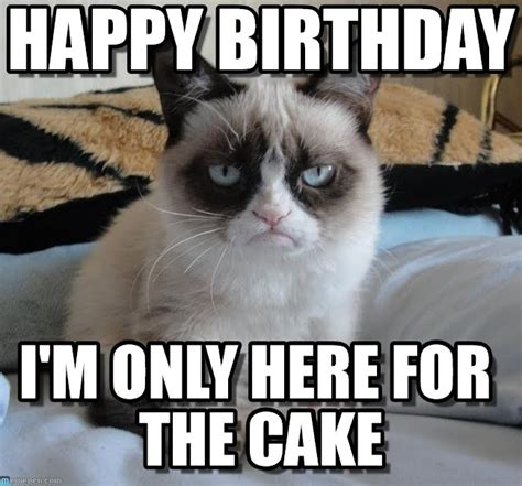 Grumpy Cat Meme Happy Birthday - grumpy cat birthday grumpy cat happy birthday i m