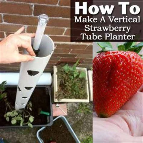How To Make A Vertical Planter by 17 Beste Idee 235 N Aardbeien Planten Op