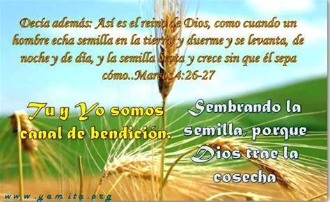versiculos biblicos para graduacion textos biblicos para graduacion newhairstylesformen2014 com