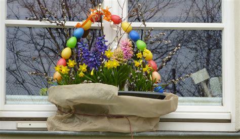 Pflanze Winterhart 2993 by Fr 252 Hjahrsbepflanzung Auf Balkon Und Terrasse