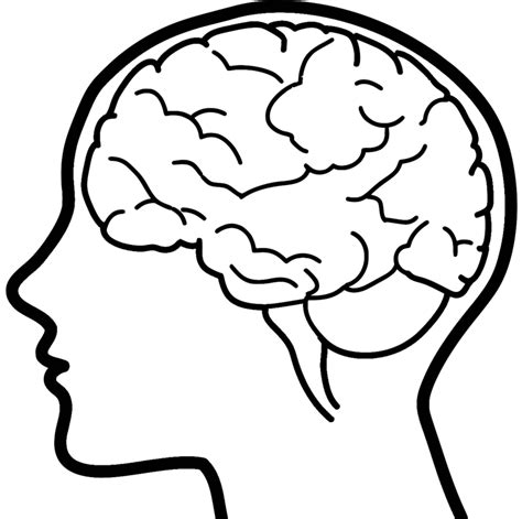 brain clipart brain clipart transparent pencil and in color