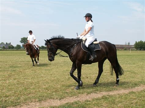 galoppo seduto jak jezdit na koni