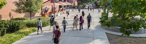 Chico State Mba Program by California State Chico The College Of
