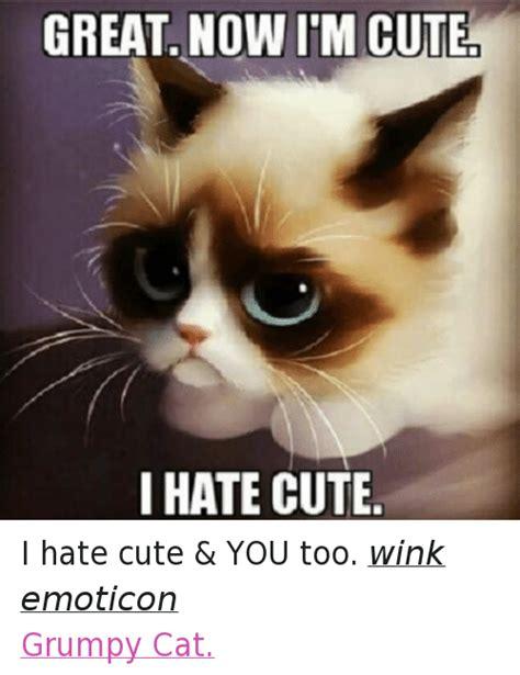 im cute aww  otterhere awww aww meme  meme