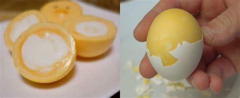dimana kita harus membuat kartu kuning ajaib ini rahasia merebus telur supaya bagian kuning