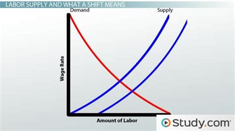 How Does Age Affect Productivity Explain Mba by Understanding Shifts In Labor Supply And Labor Demand