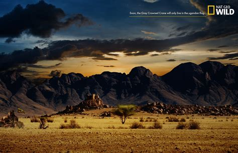 National Geographic Also Search For National Geographic Print Advert By Tbwa Flag 3 Ads Of The World