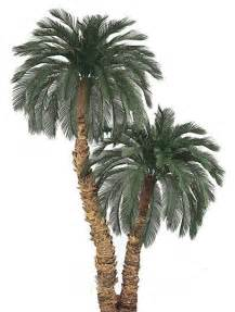 Outdoor Potted Trees 8 5 Outdoor Artificial Palm Trees Non Potted A 415 418