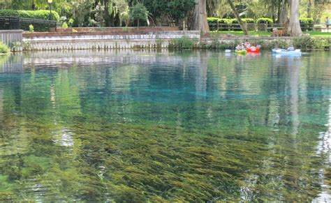 right where we belong silver springs silver springs state park at ocala florida