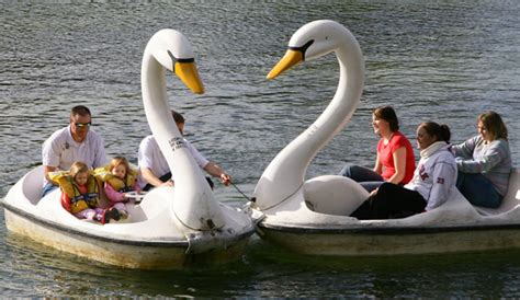 swan boats at lightwater valley theme park in ripon - Swan Boats Uk