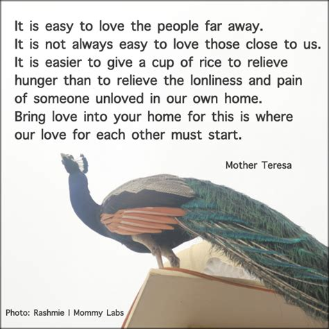 Teresa Quotes Teresa Quotes Espanol Quotesgram