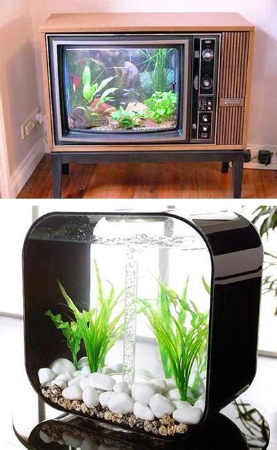 unusual aquariums  custom tropical fish tanks