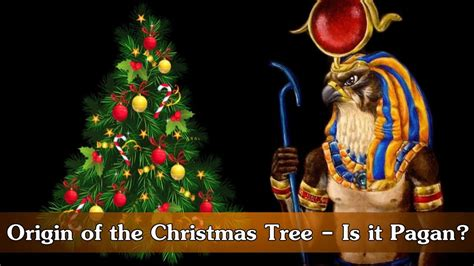 origin of the christmas tree bbc origin of the tree is it pagan