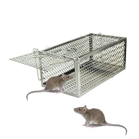 gabbia cattura gatti moorland trappola stabile e robusta animali vivi