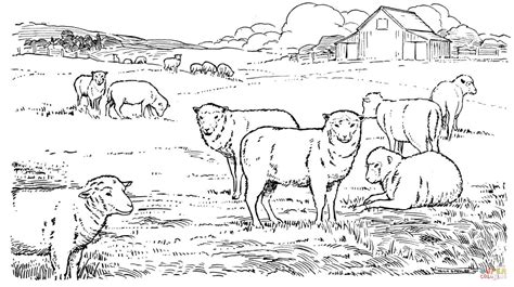 herd of horses coloring pages pin herd colouring pages on pinterest