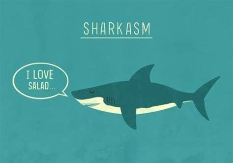 baby shark jokes stupid but clever puns that you can t help giggling at 54