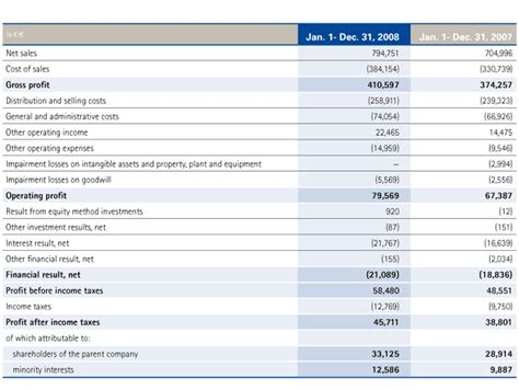 consolidated income statement template consolidated income statement messer annual report 2008