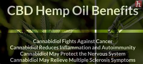 hemp health revolution the a to z health benefits of hemp extract books our calendar of days and the i ching