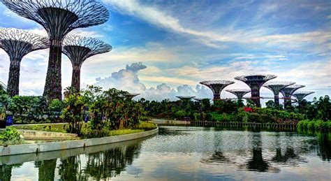 Singapore Gardens By The Bay - file supertree grove gardens by the bay singapore
