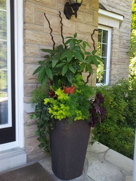 spring and summer planters