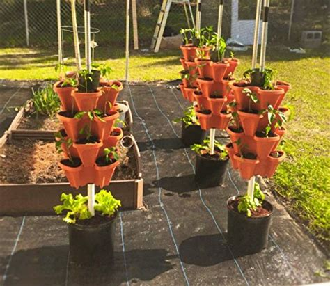 Self Watering Strawberry Planter by Mr Stacky 5 Tier Strawberry Planter Pot 5 Pots 729440926199 Toolfanatic
