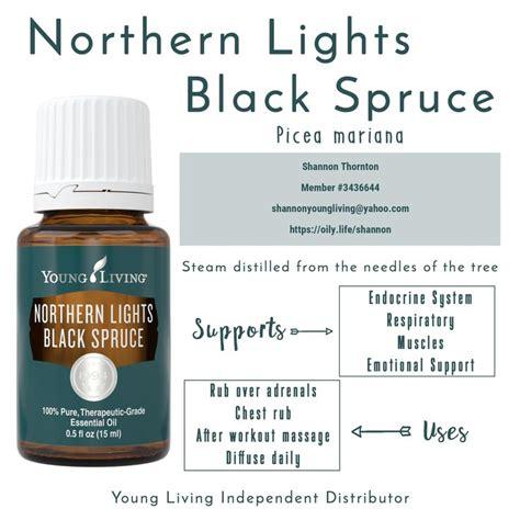 northern lights black spruce essential northern lights black spruce essential oils