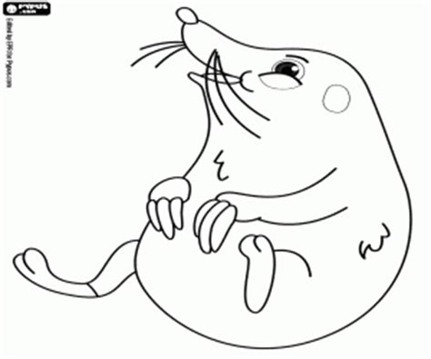 underground animals coloring page other wild animals coloring pages printable games