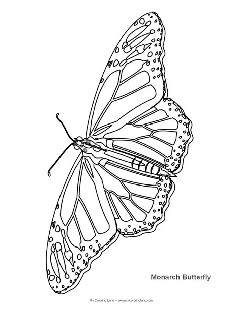 coloring pages of monarch butterflies free coloring pages of outline of a butterfly