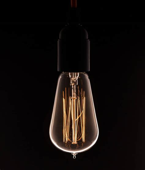 Pear Squirrel Cage Filament Vintage Light Bulb Rustic Bulb Light At