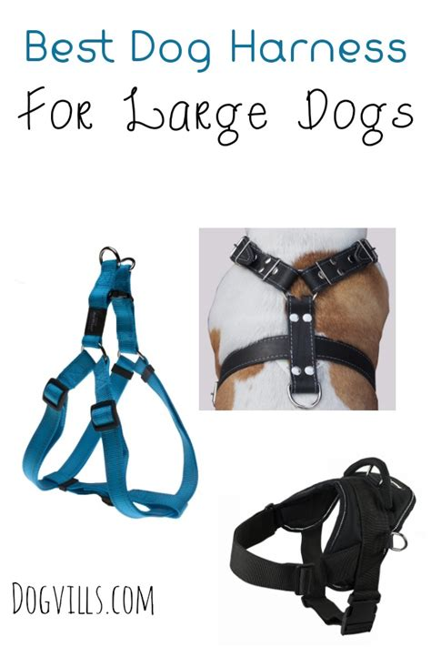 best harness for dogs tips for choosing the best harness for large dogs dogvills