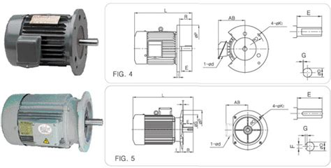 3 phase induction motor dimensions three phase squirrel induction motor flange type kijeonsa co ltd