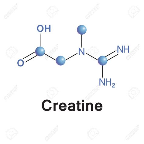 creatine structure nootropics for sports and strength peak nootropics