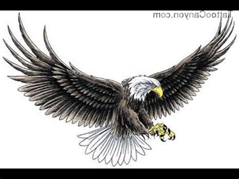 eagle wing tattoo designs eagle wings designs www imgkid the image