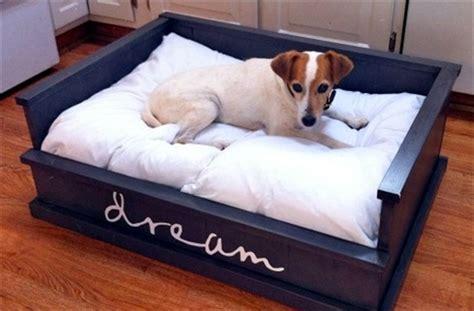 Dog Hooks Decorative Pallet Dog Bed Fun Filled Use Of Pallet Woods Wooden